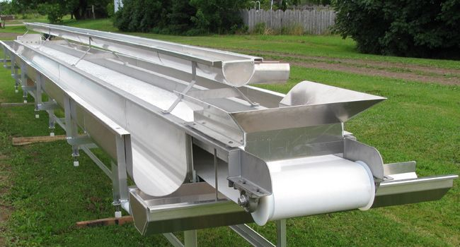 Conveyor for fish plant